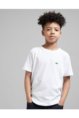 Lacoste Small Logo T-Paita Juniorit - Only at JD - Kids
