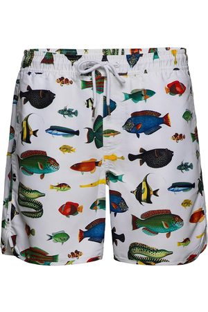 Dedicated Swim Shorts Tropical Fish Uimashortsit