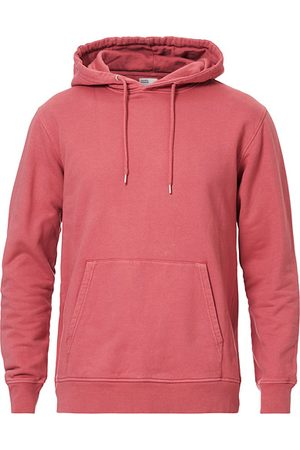 Colorful Standard Classic Organic Hood Raspberry Pink