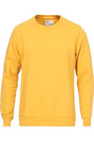 Colorful Standard Classic Organic Crew Neck Sweat Burned Yellow