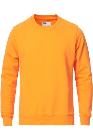 Colorful Standard Classic Organic Crew Neck Sweat Sunny Orange