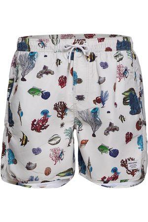 Dedicated Swim Shorts Coral Reef Uimashortsit Kermanvärinen