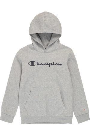 Champion Collegepaita
