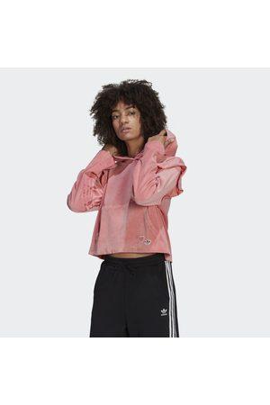 adidas Naiset Hupparit - Hoodie