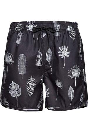 Dedicated Swim Shorts Sandhamn Tropic Leaves Grey Uimashortsit Musta