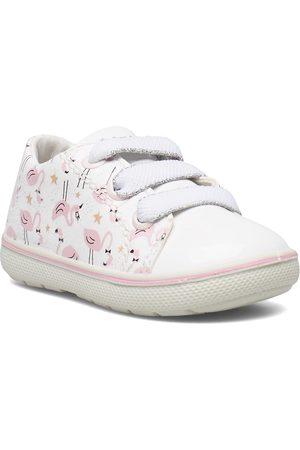Primigi Lapset Kengät - Psn 33731 Shoes Pre Walkers Beginner Shoes 18-25