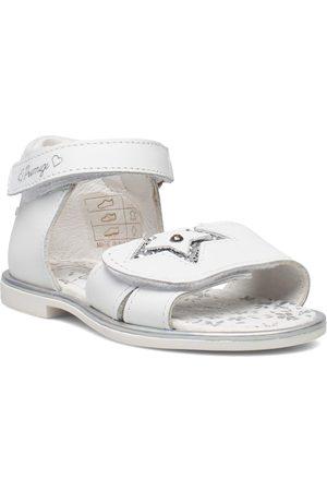 Primigi Phd 54161 Shoes Pre Walkers Beginner Shoes 18-25