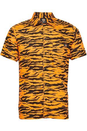 Dickies Quamba Shirt Lyhythihainen Paita