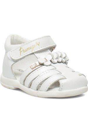 Primigi Ppb 54022 Shoes Pre Walkers 18-25