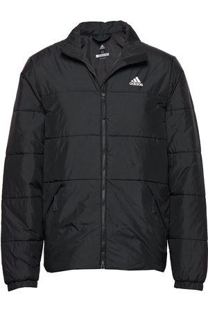 adidas Performance Bsc 3-Stripes Insulated Winter Jacket Vuorillinen Takki Topattu Takki