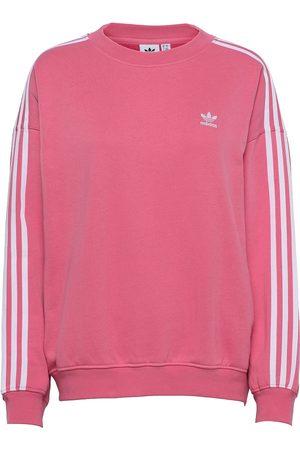 adidas Naiset Collegepaidat - Adicolor Classics Over D Sweatshirt W Svetari Collegepaita Vaaleanpunainen
