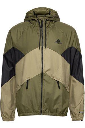 adidas Back To Sport Wind.Rdy Jacket Ohut Takki Vihreä