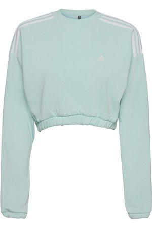 adidas Naiset Collegepaidat - Crop Crew Sweatshirt W Svetari Collegepaita Sininen