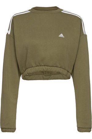 adidas Crop Crew Sweatshirt W Svetari Collegepaita Ruskea